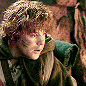 Middle-earth Series: Samwise 'Sam' Gamgee